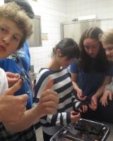 DPSG Darmstadt Liebfrauen: Beschäftigung mit Fairem Handel der Rover Thumbnail